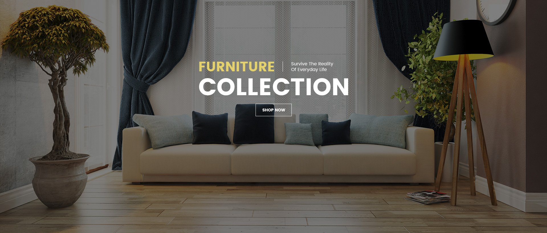 Furniture Collection